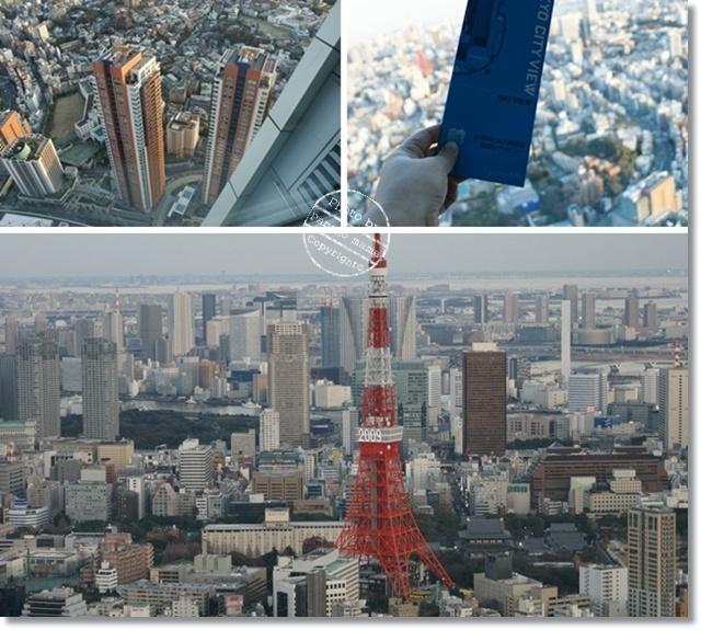 2009-1-6-4.jpg