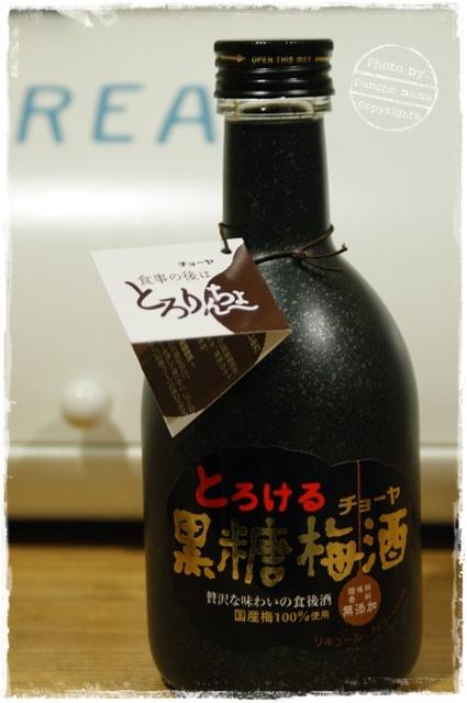 2010-2-13-1.JPG