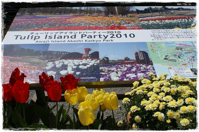 2010-4-10-1.JPG