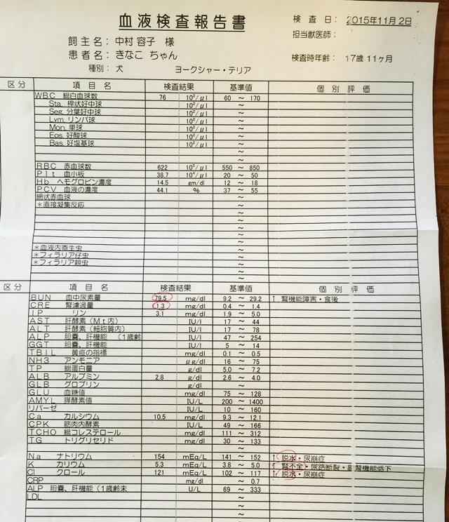 2015-11-12-3.JPG