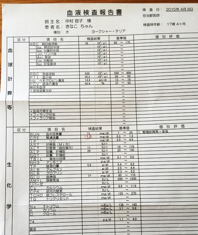 2015-4-9-2.JPG