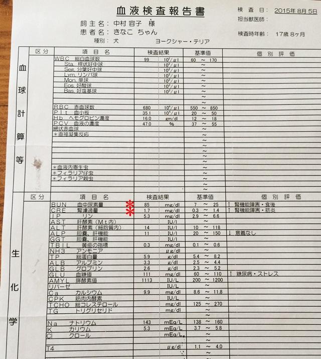 2015-8-5-5.JPG