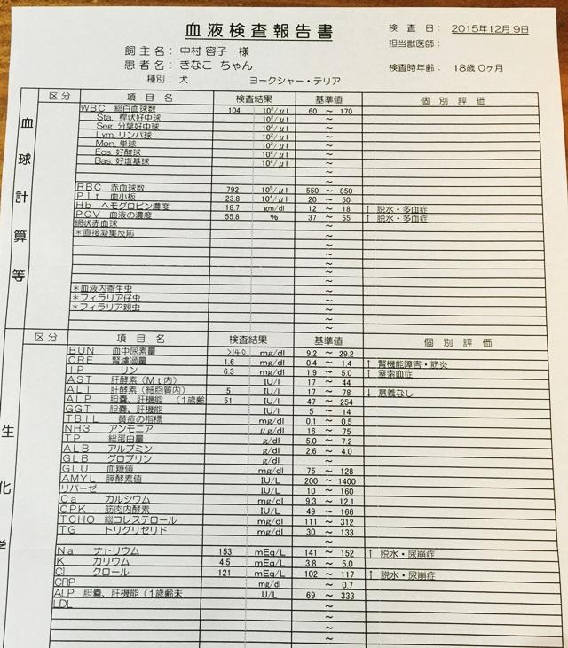 2016-1-6-3.JPG